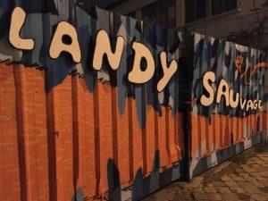 Landy Sauvage